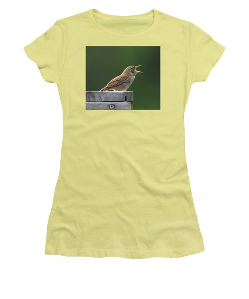 House Wren Stony Brook New York Women's T-Shirt (Athletic Fit)