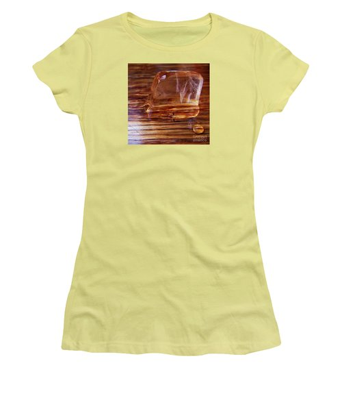 Women's T-Shirt (Junior Cut) featuring the photograph Icecube Trail by Vanessa Palomino