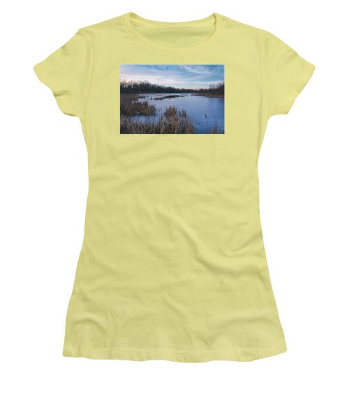 Icy Glazed Wetlands Women's T-Shirt (Junior Cut) by Angelo Marcialis