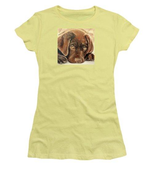 I'm Sorry - Chocolate Lab Puppy Women's T-Shirt (Junior Cut) by Julie Brugh Riffey