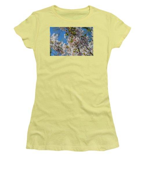 Japanese Cherry  Blossom Women's T-Shirt (Junior Cut) by Daniel Precht