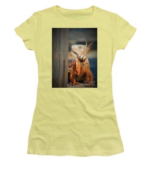 Just Around The Corner Women's T-Shirt (Junior Cut) by Pamela Blizzard