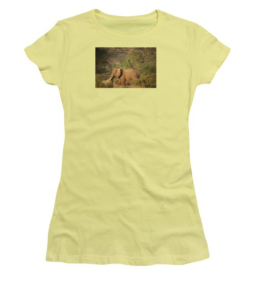 Women's T-Shirt (Junior Cut) featuring the photograph Just Passing Through by Gary Hall