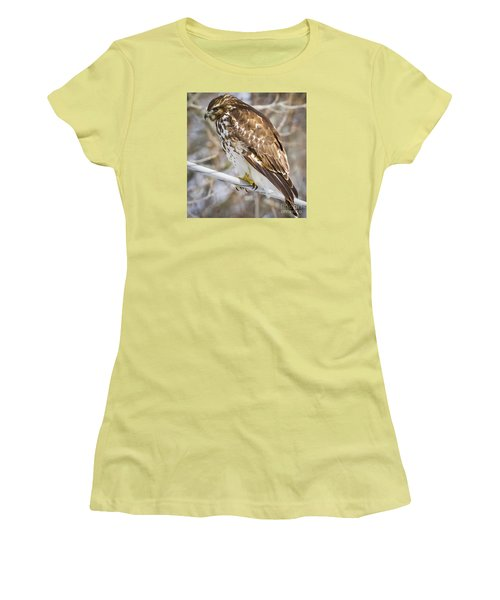 Women's T-Shirt (Junior Cut) featuring the photograph Juvenile Red-shouldered Hawk  by Ricky L Jones
