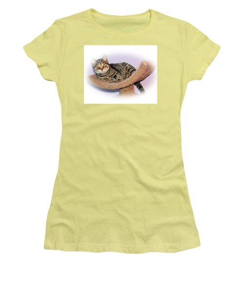 Women's T-Shirt (Junior Cut) featuring the photograph Kitty Perch by Debbie Stahre