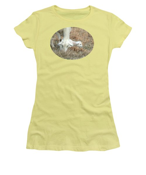 L Is For Lamb Women's T-Shirt (Junior Cut) by Anita Faye