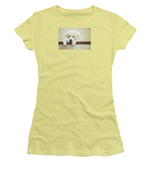 Labrador Retriever On The Stairs Women's T-Shirt (Junior Cut) by Diane Diederich