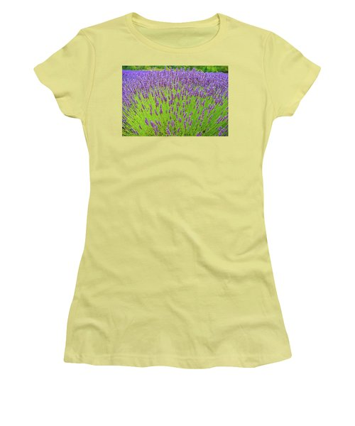 Women's T-Shirt (Junior Cut) featuring the photograph Lavender Gathering by Ken Stanback