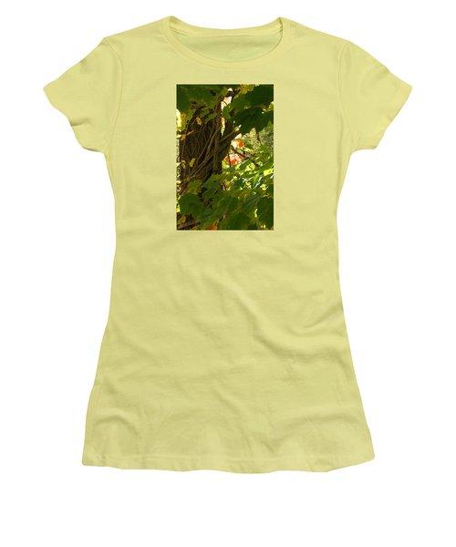 Leaf Peeping In Red Women's T-Shirt (Junior Cut) by Margie Avellino