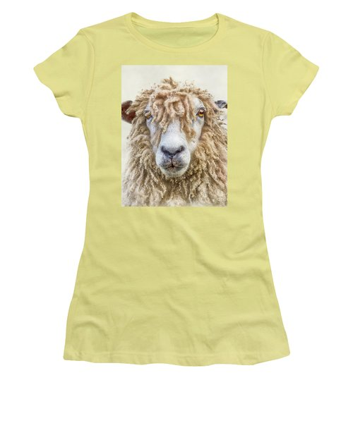 Leicester Longwool Sheep Women's T-Shirt (Junior Cut) by Linsey Williams
