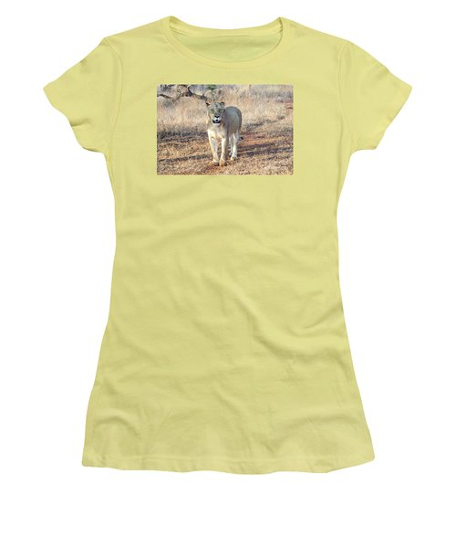 Lioness In Kruger Women's T-Shirt (Junior Cut) by Pravine Chester