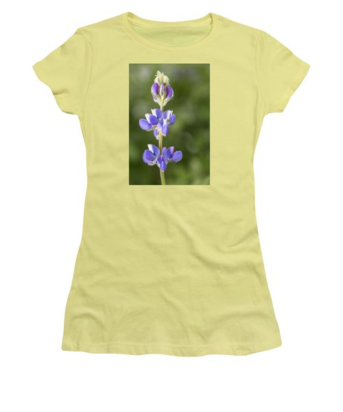 Little Lupine Women's T-Shirt (Athletic Fit)