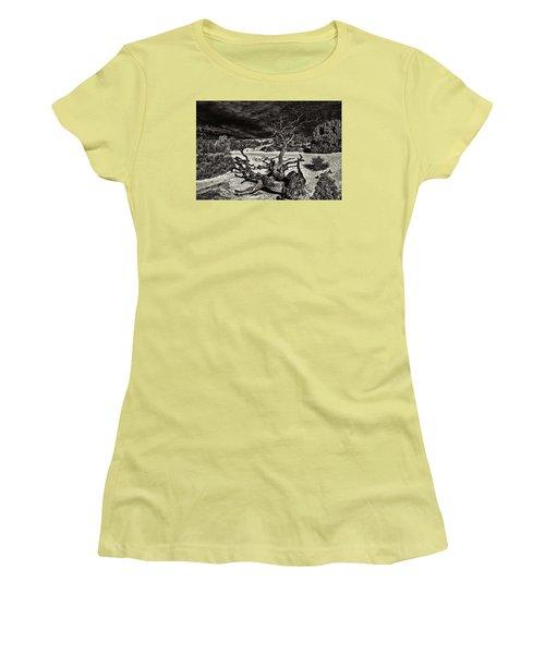 Lonely Tree #4  Women's T-Shirt (Junior Cut) by Alex Galkin