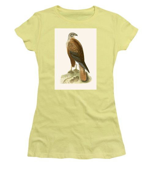 Long Legged Buzzard Women's T-Shirt (Junior Cut) by English School