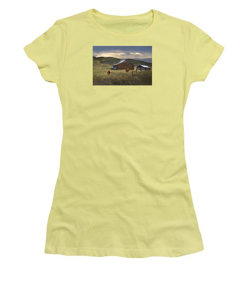 Longhorns On The Road To Steamboat Lake Women's T-Shirt (Junior Cut) by John Hix