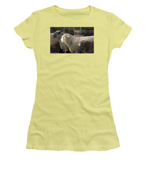 Looking For The Shepherd Women's T-Shirt (Athletic Fit)