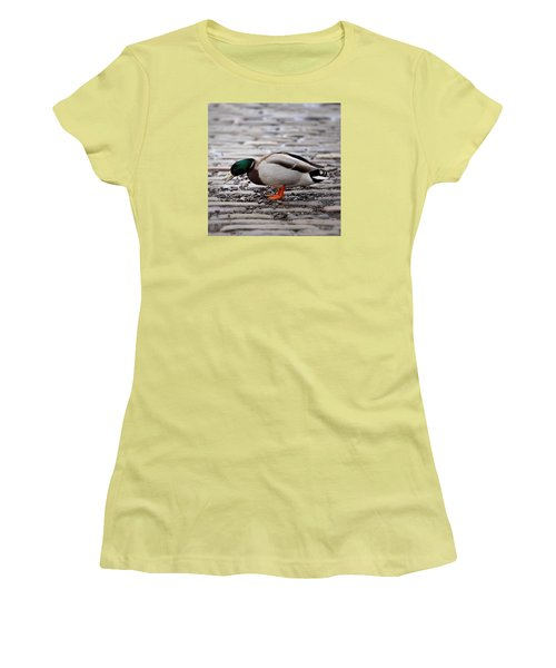 Women's T-Shirt (Junior Cut) featuring the photograph Lunch Time by Jeremy Lavender Photography
