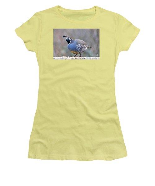 Women's T-Shirt (Junior Cut) featuring the photograph Male California Quail by Sean Griffin