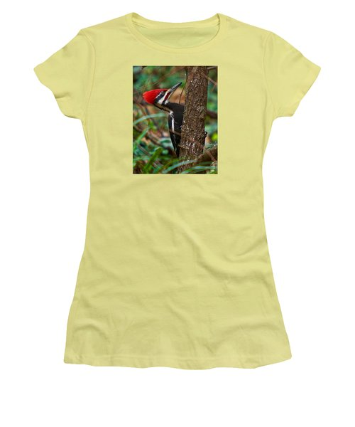 Male Pileated Woodpecker Women's T-Shirt (Athletic Fit)