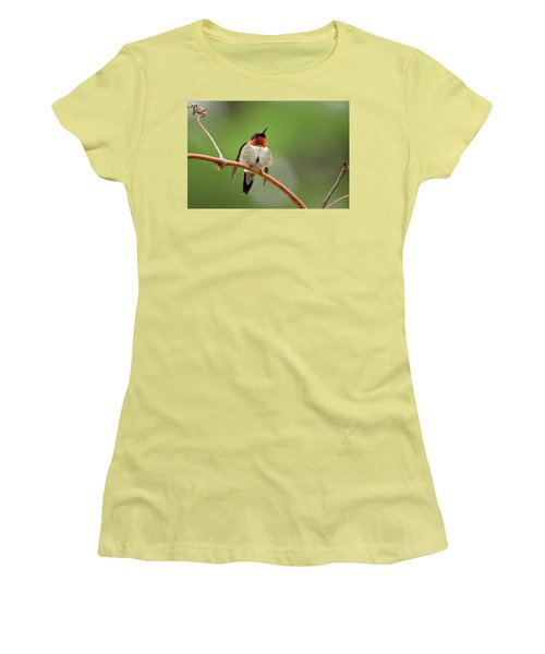 Male Ruby Throated Hummingbird Women's T-Shirt (Athletic Fit)