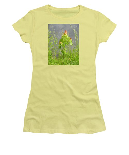 Maple On Lake Women's T-Shirt (Junior Cut) by Craig Walters
