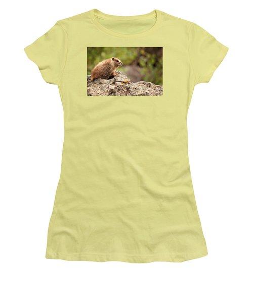 Marmot Women's T-Shirt (Junior Cut)