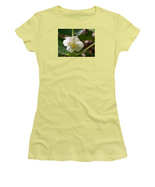 May-apple Blossom Women's T-Shirt (Junior Cut) by Linda Geiger
