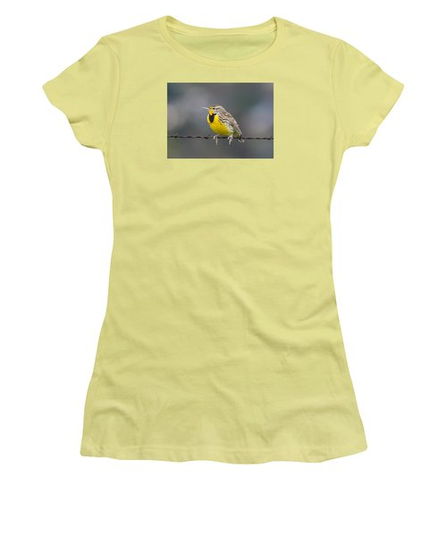 Meadowlark On Barbed Wire Women's T-Shirt (Junior Cut) by Marc Crumpler