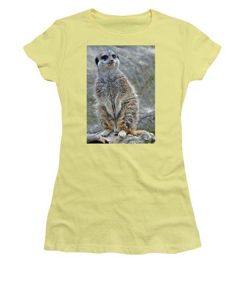 Meerkat Poses Women's T-Shirt (Athletic Fit)