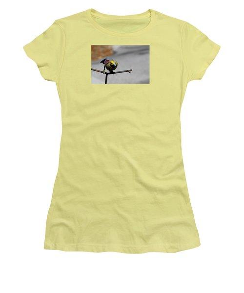 Women's T-Shirt (Junior Cut) featuring the photograph Metallic Bunting by Richard Patmore