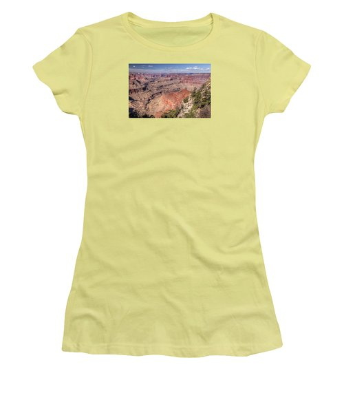 Mohave Women's T-Shirt (Junior Cut) by John Gilbert