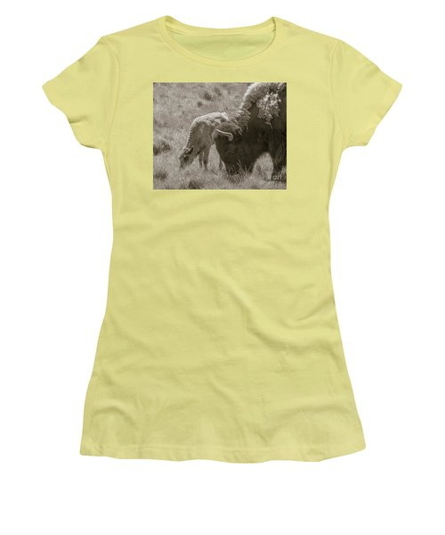 Women's T-Shirt (Junior Cut) featuring the photograph Mom And Baby Buffalo by Rebecca Margraf