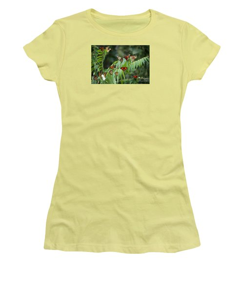 Monarch Migration Women's T-Shirt (Athletic Fit)
