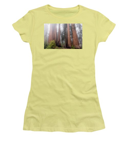 Women's T-Shirt (Athletic Fit) featuring the photograph Morning Light In The Forest by Peggy Hughes