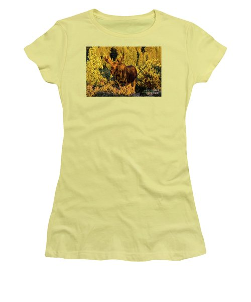 Morning Moose Women's T-Shirt (Junior Cut) by Steven Parker