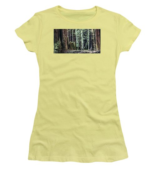 Women's T-Shirt (Junior Cut) featuring the photograph Morning Redwoods by Shirley Mangini