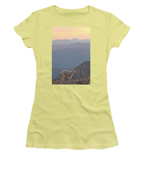 Women's T-Shirt (Junior Cut) featuring the photograph Mountain Goat Sunset by Scott Mahon