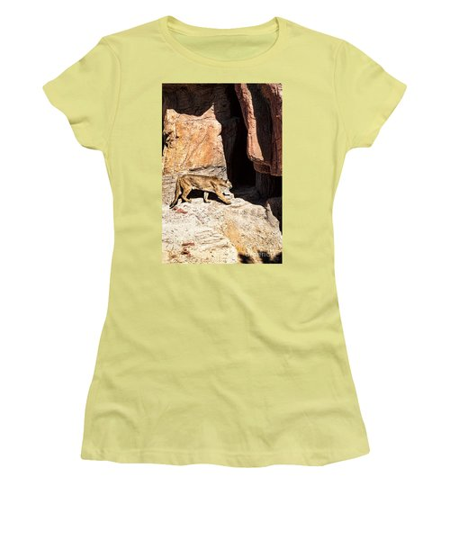 Women's T-Shirt (Junior Cut) featuring the photograph Mountain Lion by Lawrence Burry