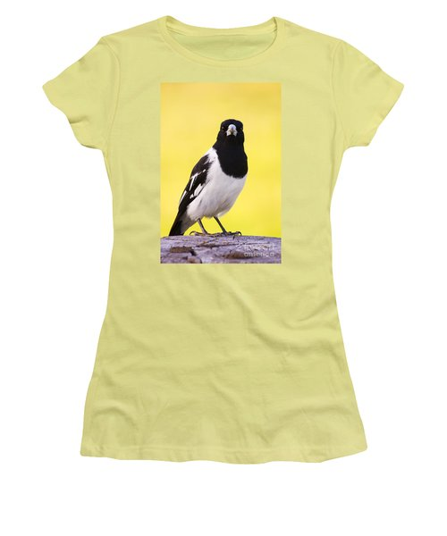Mr. Magpie Women's T-Shirt (Athletic Fit)