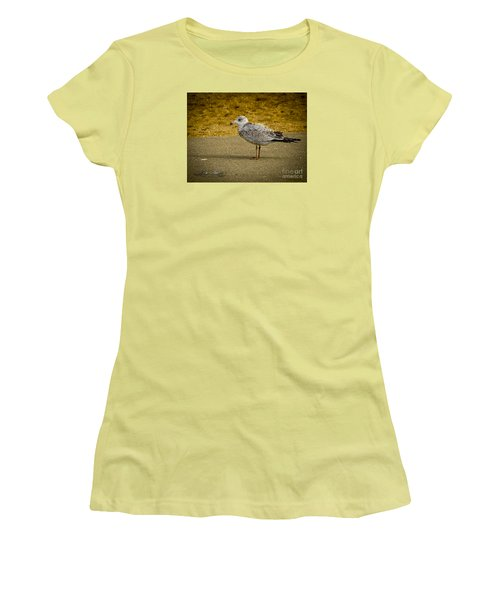 Women's T-Shirt (Junior Cut) featuring the photograph Mr. Seagull by Melissa Messick