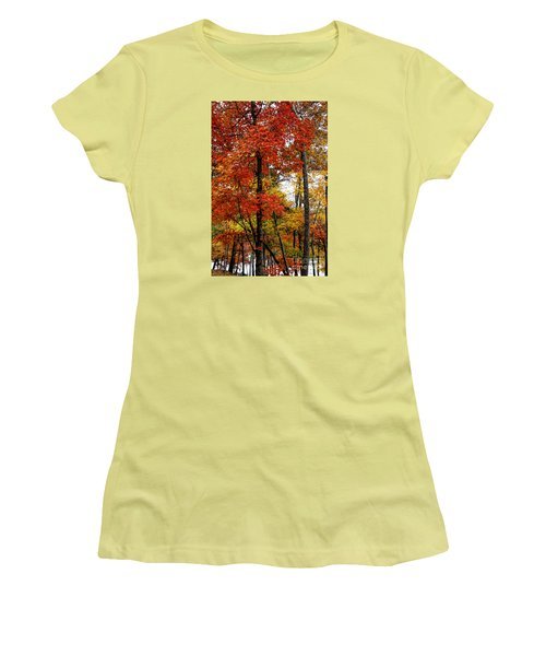 Multi-colored Leaves Women's T-Shirt (Junior Cut) by Barbara Bowen