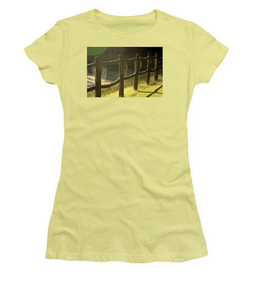 Multiple Spiderwebs On Wooden Fence Women's T-Shirt (Athletic Fit)