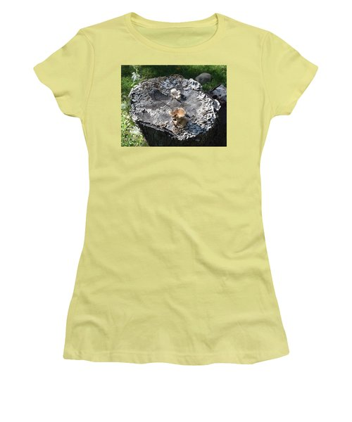 Mushroom Stump Women's T-Shirt (Athletic Fit)