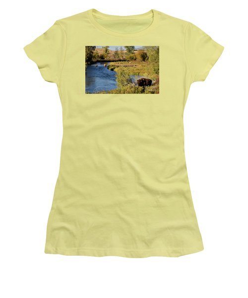 National Bison Range Women's T-Shirt (Junior Cut) by Cindy Murphy - NightVisions