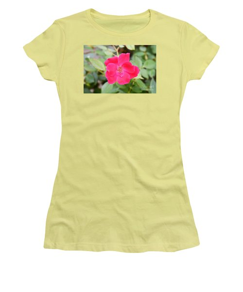 Women's T-Shirt (Junior Cut) featuring the photograph Nature - Colorful Flower Gifts  by Ray Shrewsberry
