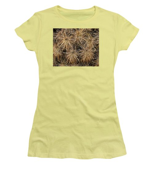 Needles And Hay Stacks Women's T-Shirt (Athletic Fit)