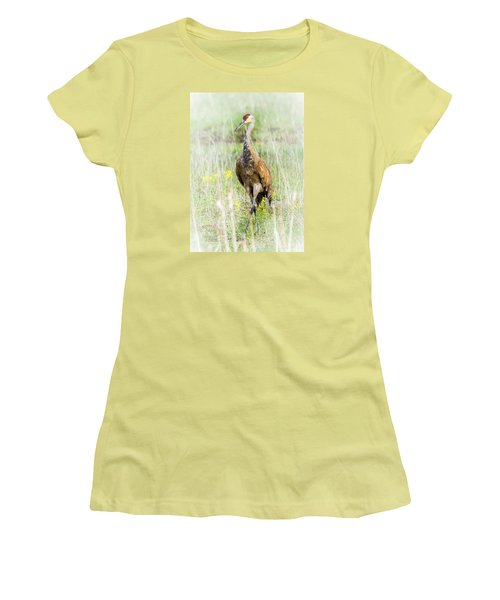 Women's T-Shirt (Junior Cut) featuring the photograph Nesting Sandhill Crane by Daniel Hebard