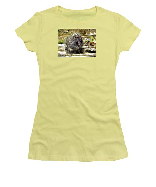 Women's T-Shirt (Junior Cut) featuring the photograph North American Porcupine by Kathy Kelly