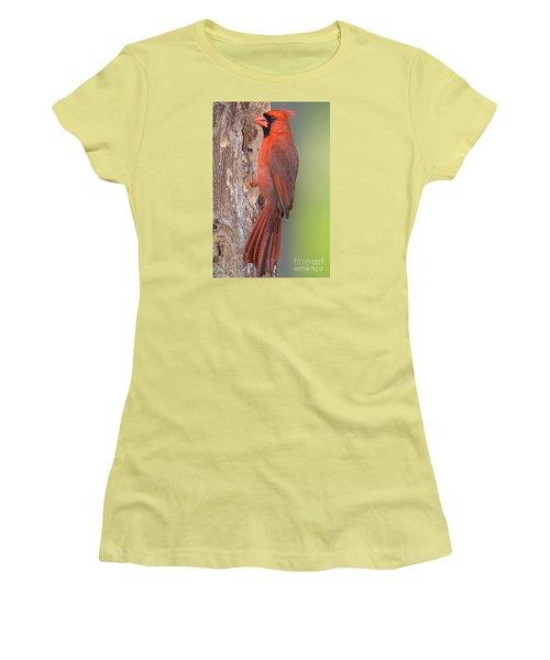 Northern Cardinal Male Women's T-Shirt (Junior Cut) by Bonnie Barry