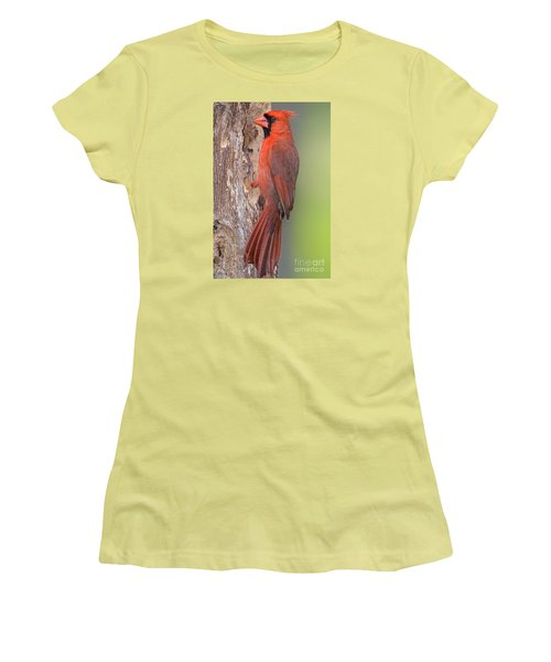 Northern Cardinal Male Women's T-Shirt (Athletic Fit)